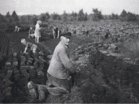 Moorarbeiter 1945